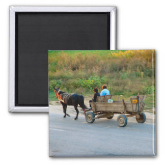 Romania, Horse and cart transport Magnet