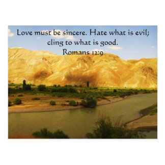 Romans 12:9   inspirational Bible verse Postcard
