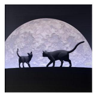 Romantic cats acrylic wall art