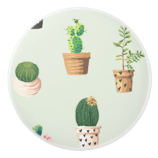 Romantic Cute succulent cactus on mint background Ceramic Knob