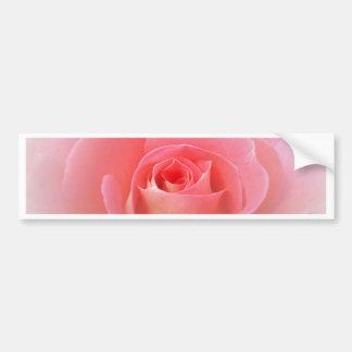 Romantic Pink Rose Bumper Sticker