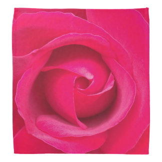 Romantic Red Pink Rose Bandana