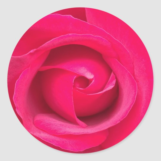 Romantic Red Pink Rose Classic Round Sticker