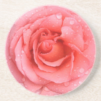 Romantic Red Pink Rose Water Drops Coaster