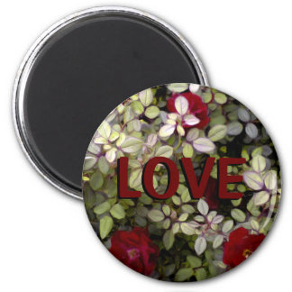 Romantic Red Roses Love Magnet