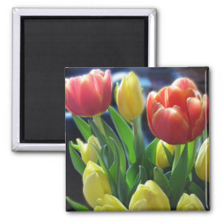 Romantic Red & Yellow Tulip Flowers Fridge Magnet