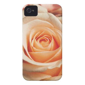 Romantic Rose Pink Rose iPhone 4 Case-Mate Case
