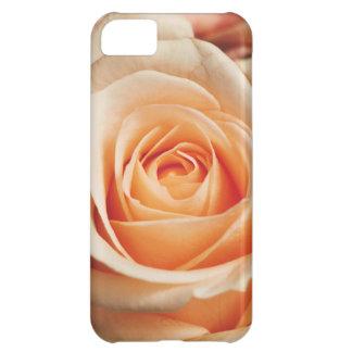 Romantic Rose Pink Rose iPhone 5C Cover
