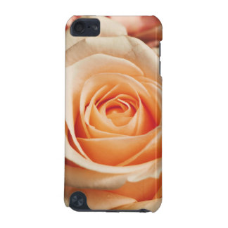 Romantic Rose Pink Rose iPod Touch 5G Covers