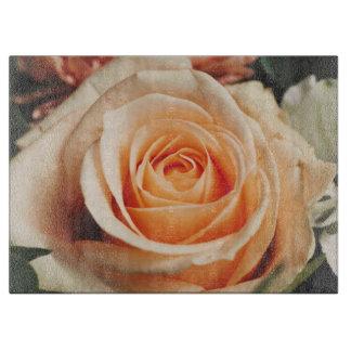 Romantic Rose Pink Roses Spring Flower Floral Boards