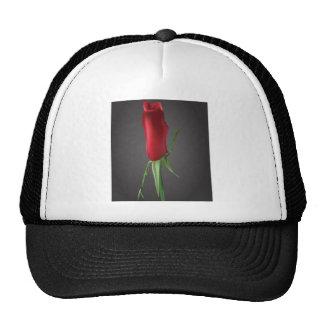 Romantic rosebud mesh hat