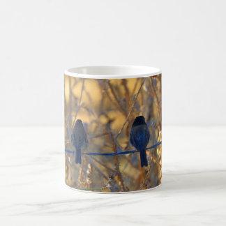 Romantic sparrow bird couple on a wire, Photo Coffee Mug
