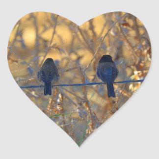 Romantic sparrow bird couple on a wire, Photo Heart Sticker
