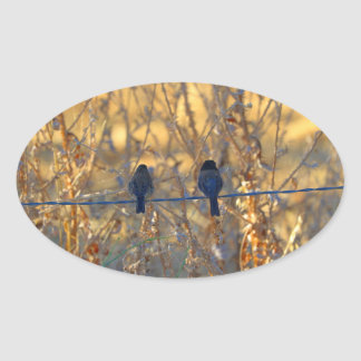 Romantic sparrow bird couple on a wire, Photo Oval Sticker