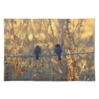 Romantic sparrow bird couple on a wire, Photo Place Mats