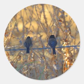 Romantic sparrow bird couple on a wire, Photo Round Sticker