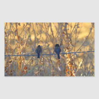 Romantic sparrow bird couple on a wire, Photo Sticker