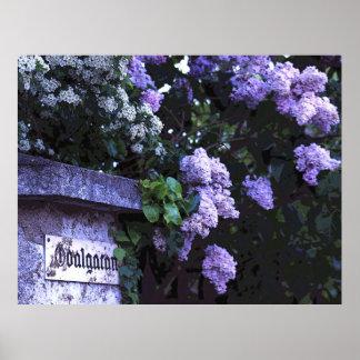 Romantic Vintage Lilacs Poster
