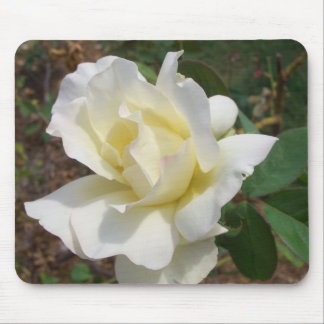 Romantic White Rose Blossom Garden CricketDiane Mouse Pad