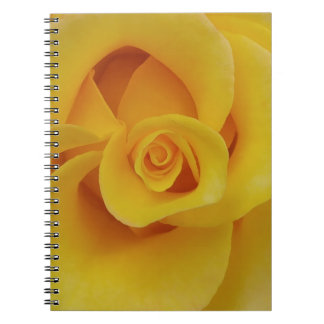 Romantic Yellow Rose Petals Notebook