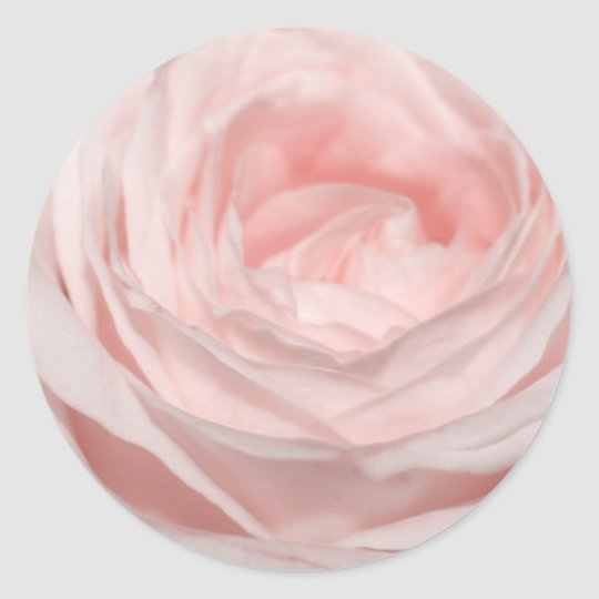 Romantica pink rose classic round sticker