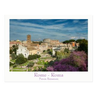 Rome - Forum Romanum postcard with text