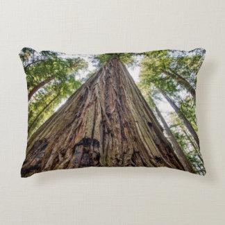 Roosevelt Grove Accent Pillow