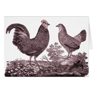 Rooster and Chicken Greeting Card