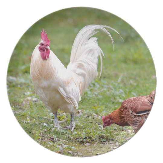 Rooster and hen plate