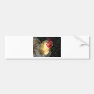 Rooster Bumper Sticker