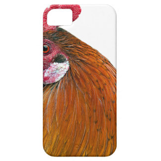 Rooster Head iPhone 5 Cases