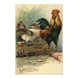 Rooster Hen Easter Colored Painted Egg Nest Photo Art