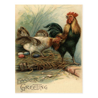 Rooster Hen Easter Colored Painted Egg Nest Postcard