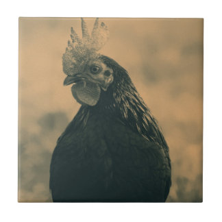 Rooster in Sepia Tiles