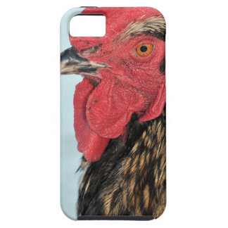 Rooster iPhone 5 Cover