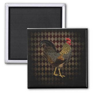 Rooster on harlequin magnet