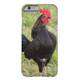 Rooster Portrait Barely There iPhone 6 Case