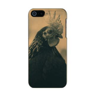 Rooster Portrait Incipio Feather® Shine iPhone 5 Case