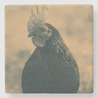 Rooster Portrait Stone Coaster
