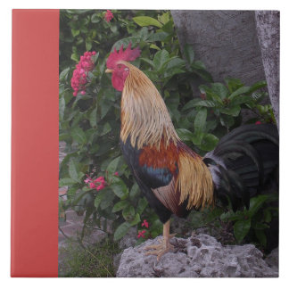 Rooster Proud and Colorful Tiles