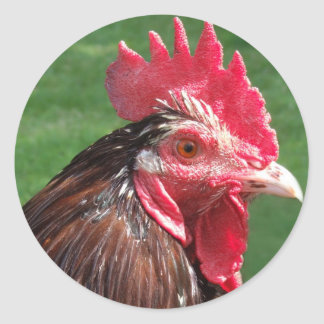Rooster Stickers