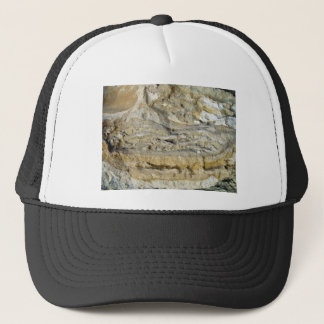 Root fossils in limestone seawall trucker hat