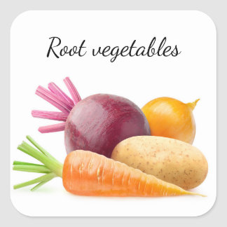 Root vegetables square sticker