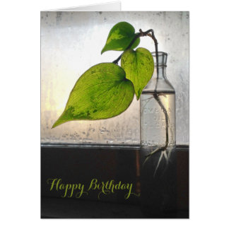 Rooting Plant in a Antique Clear Glass Bottle Card