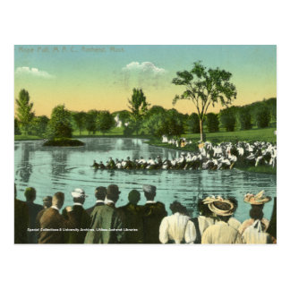 Rope Pull, Campus Pond Postcard