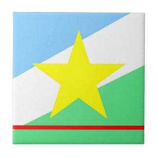 Roraima flag Brazil region province symbol Tile