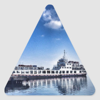 RoRo Travels in The hidden Island  of Philippines Triangle Sticker