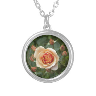 rosa-1859002 silver plated necklace