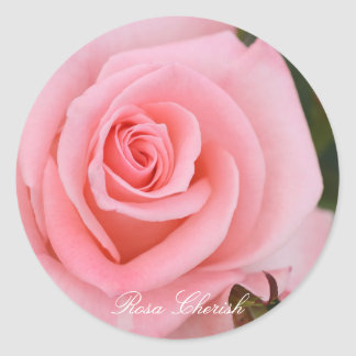 Rosa Cherish Classic Round Sticker