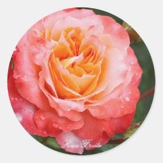 Rosa Fruite Round Sticker